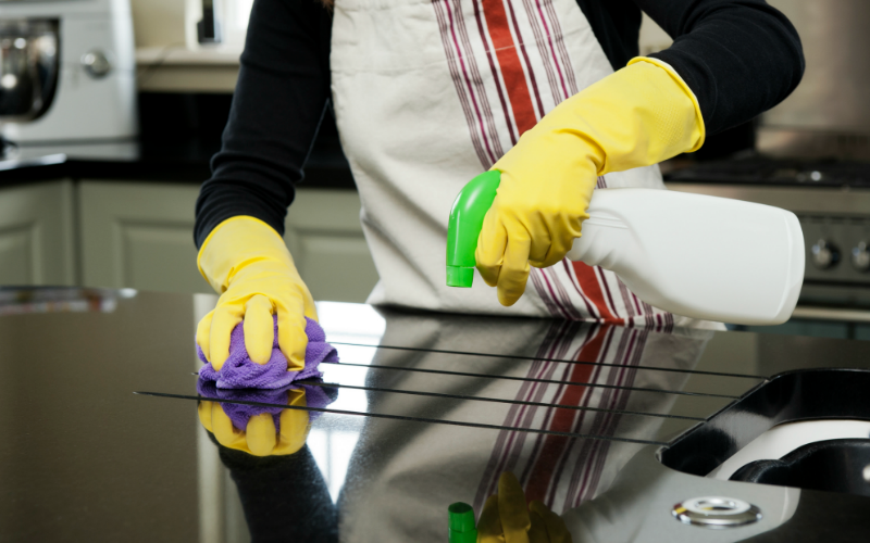 Termipest Limited - Cleaning Services in Kenya 2