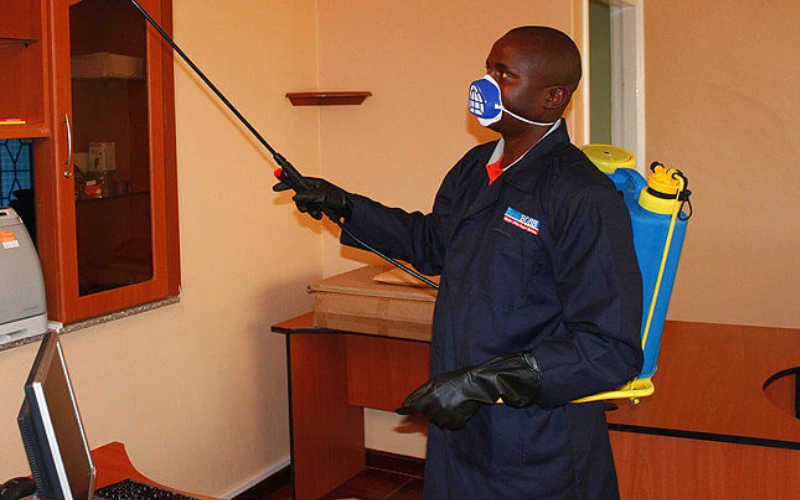 Termipest Limited - Home Pest Control services in Kenya