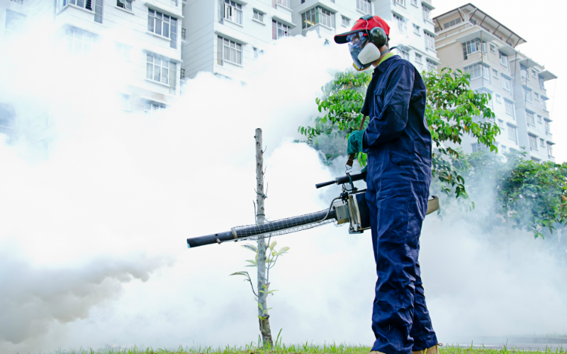 Termipest Limited - Pest Control Services in Kenya