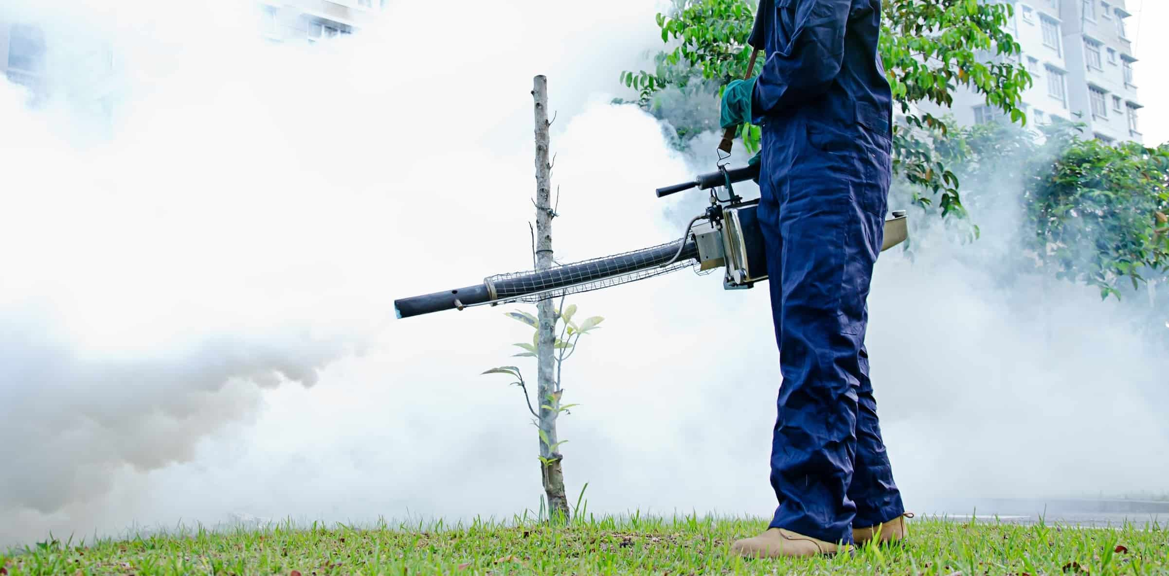 Termipest Limited - Fumigation services in Kenya
